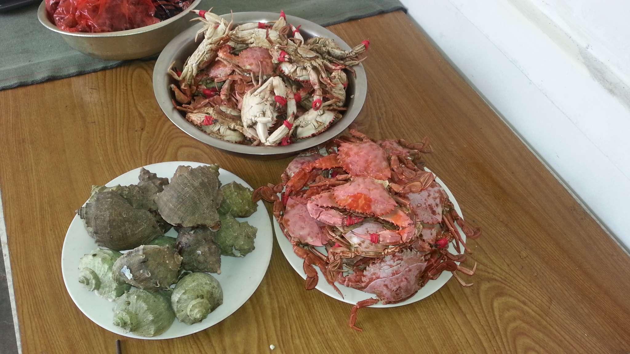 址:辽宁省大连市长海县塞里岛村 【振红渔家】 当前时间   海螺和螃蟹